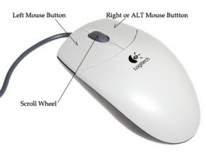 commonly used input device for pointing and clicking objects on computer
